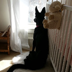 Sable-in-the-Nursery2